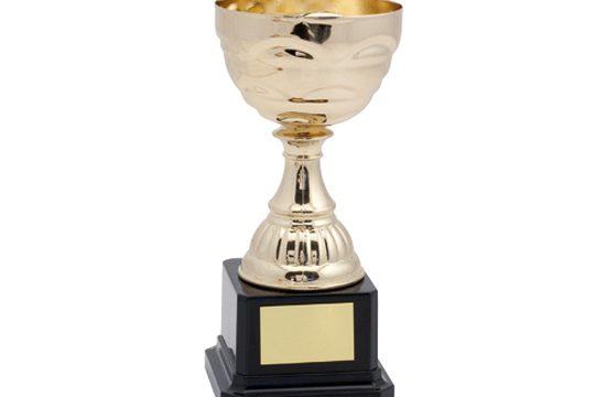 Cupfinales veld 8 personen 2018
